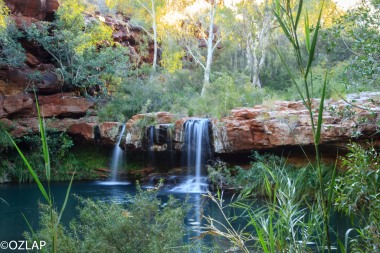 Karijini - Fern Pool (22)