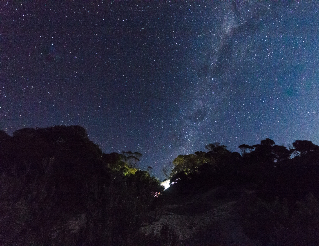 Stars Memory Cove Lincoln NP (2 of 1)