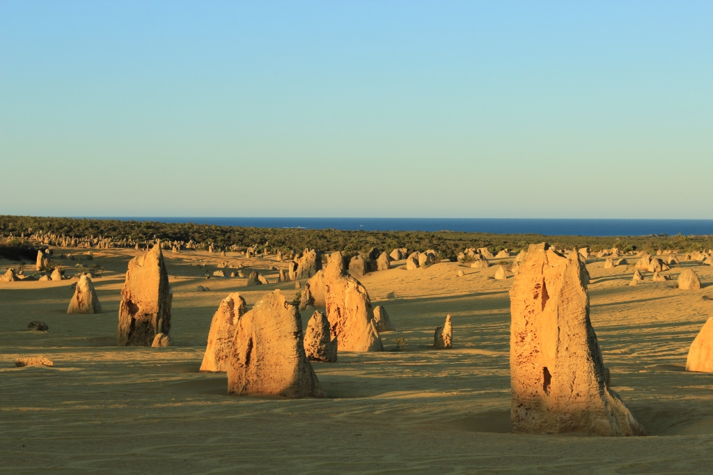 The Pinnacles (63)