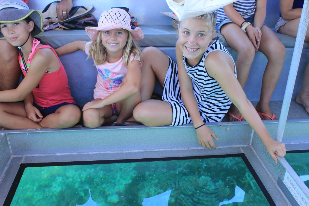 Glass bottom boat tour (29)